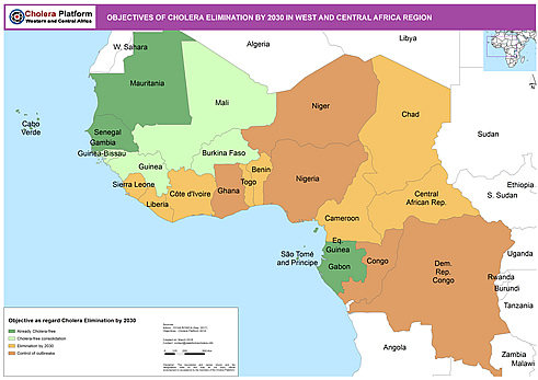 About The Regional Cholera Platform In West And Central Africa